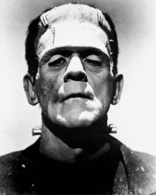frankenstein destiny vs fate A list of important facts about mary shelley's frankenstein, including setting, climax, protagonists, and antagonists.
